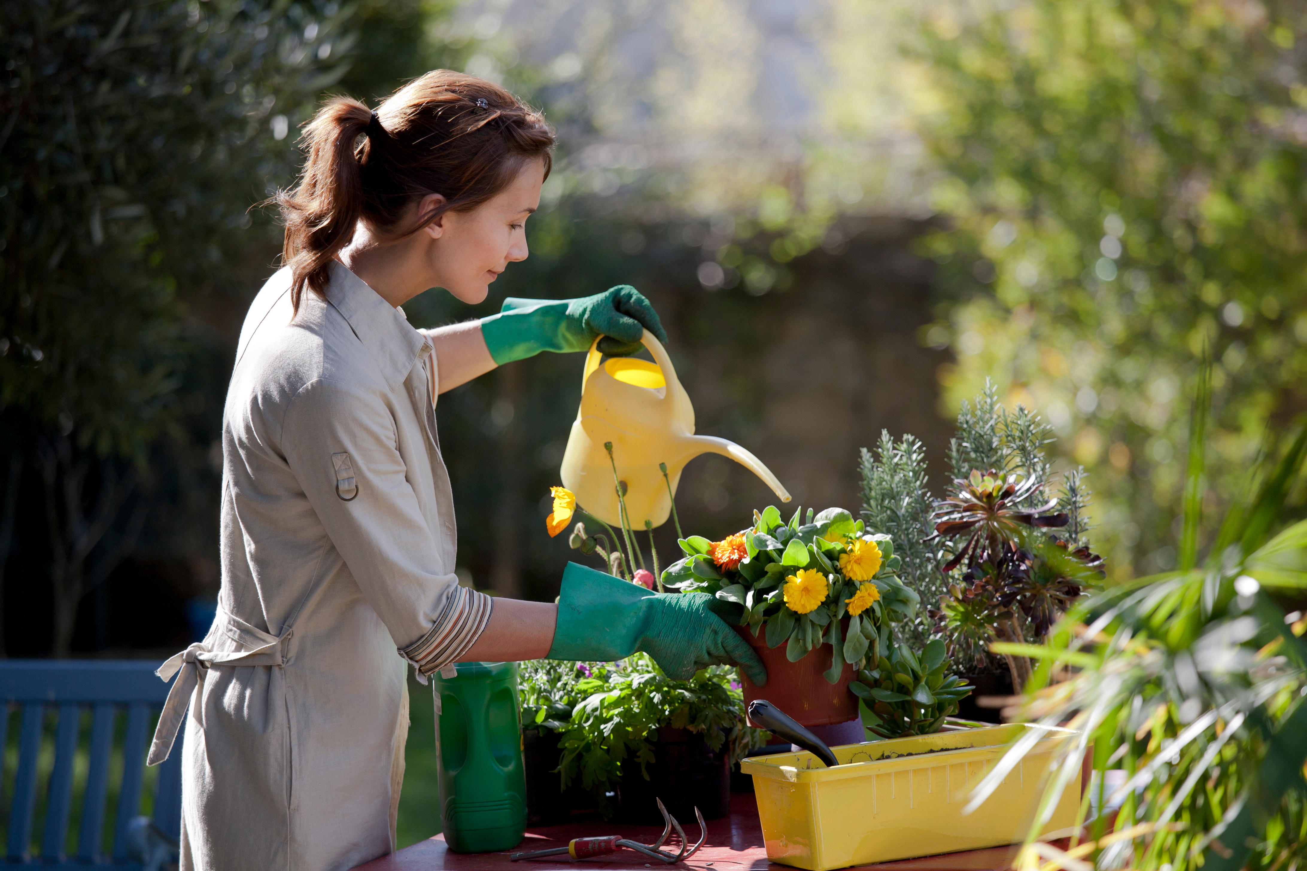 Spring will bring you warm weather and inspiration to spring clean your property.